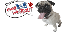 Fit 4 You - Own Your Workout!
