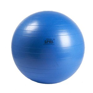 SPRI ProPlus Balls  - Available at Fitness 4 Home Superstore - Chandler, Phoenix, and Scottsdale, AZ