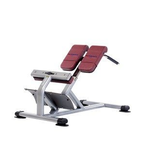 TuffStuff PPF-717 Back Station at Commercial Fitness Superstore of Arizona.