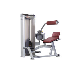 TuffStuff PPS-221 Back Extension at Commercial Fitness Superstore of Arizona.