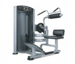 True SD1004 Force Ab / Back at Fitness 4 Home Superstore - Visit our stores in Scottsdale, Phoenix, orChandler, Arizona.