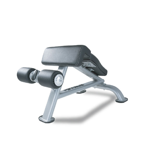True SF1010 Force Ab Bench at Fitness 4 Home Superstore - Visit our stores in Scottsdale, Phoenix, or Chandler, Arizona.