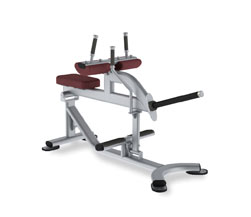 Paramount XFW-5700 Seated Calf