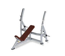Paramount XFW-7200 Incline Press Bench with Plate Holders