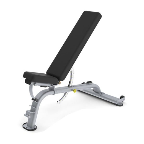 Paramount  XFW Series Benches - Commercial Gym Equipment from Commercial Fitness Superstore of Arizona.