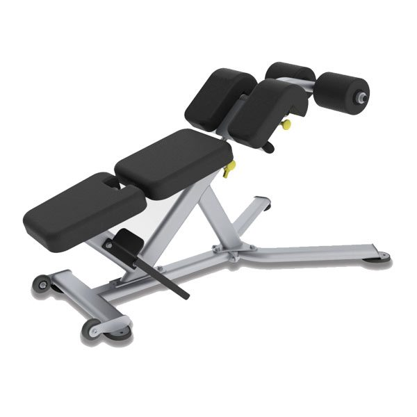 Paramount FS-22 Low Back / Abdominal Bench