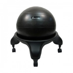 The Abs Company Evolution Chair