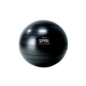 SPRI Professional Plus Xercise Ball