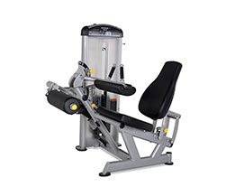 TRUE FUSE-0200 Seated Leg Curl