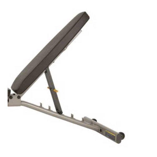 Precor Multi Angle Bench