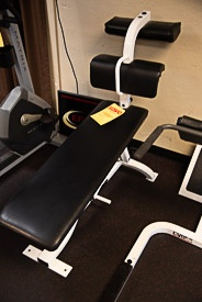 Cybex Adjustable Ab Bench