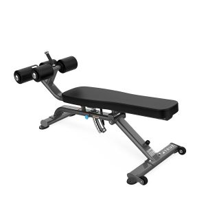 TRUE XFW-5300 Abdominal-Decline Bench