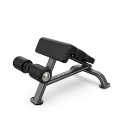 True SF1010 Force Ab Bench - Force Strength Series