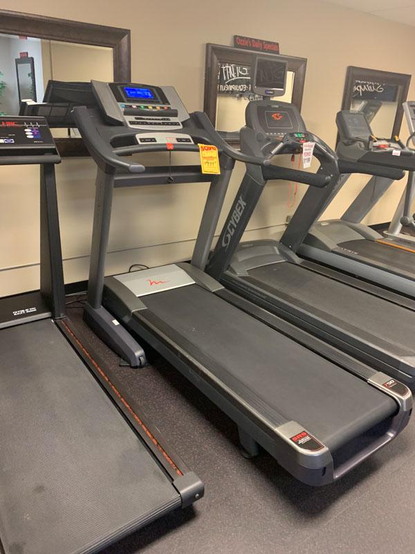 FreeMotion Fold-Up Treadmill